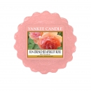 Yankee Candle Sun-Drenched Apricot Rose Tart 22 g