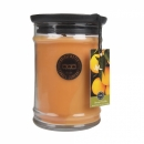 Bridgewater Candle Large Jar Orange Vanilla 524 g