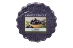Yankee Candle Cassis Tart 22 g
