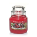 Yankee Candle Red Raspberry 104 g