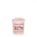 Yankee Candle Summer Scoop Sampler 49 g