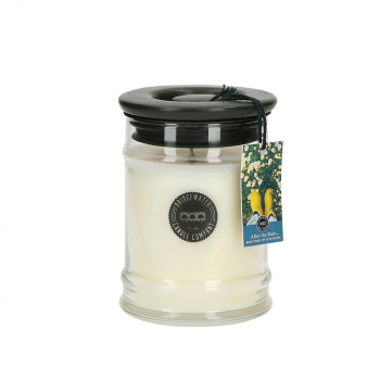 Bridgewater Candle Small Jar After the Rain 250 g