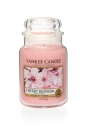 Yankee Candle Cherry Blossom 623 g
